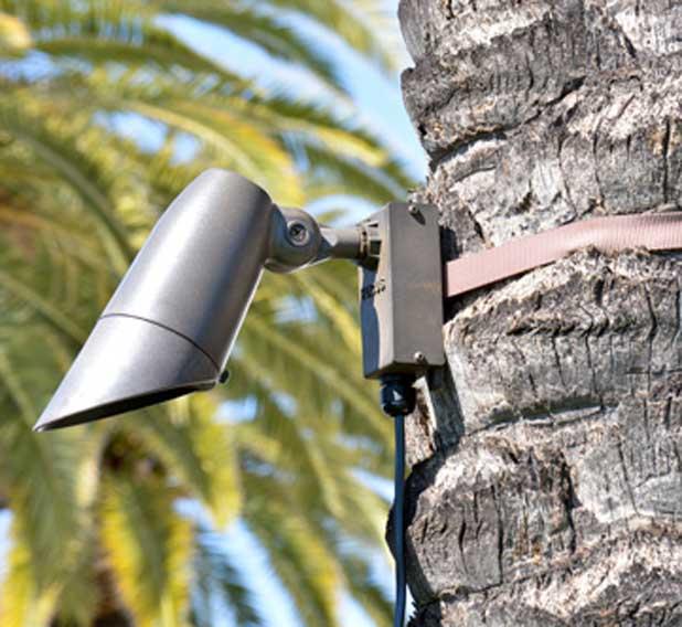 Tree Mounts Amp Tree Straps Focus Industries